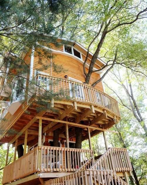 3-этажный дом на дереве для семьи и внуков (5 фото + видео)