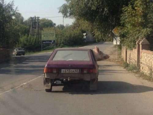 А в России тем временем… (25 фото)