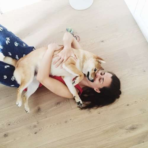 Вечно ржущий пёс по кличке Барни (21 фото)