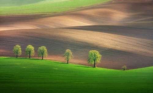 Гипнотизирующая красота Моравии в фотографиях Марчина Собаса (14 фото)