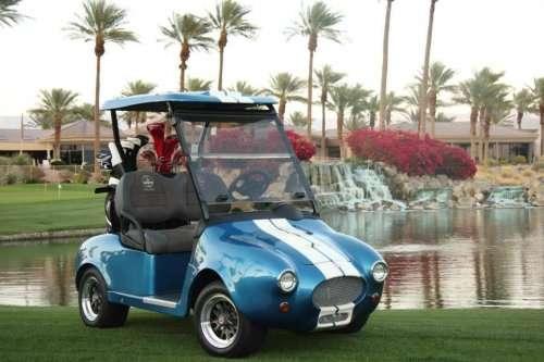 Необычные и роскошные гольф-кары (10 фото)