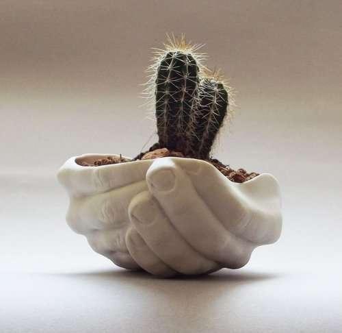 Креативные цветочные горшки (22 фото)