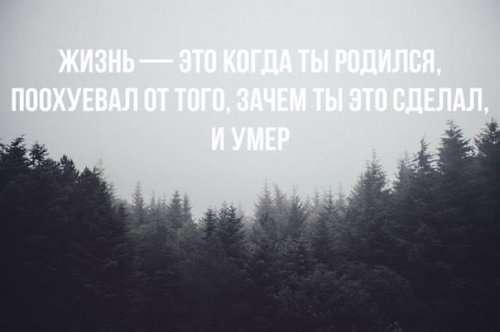 Фото-подборка приколов (42 шт)