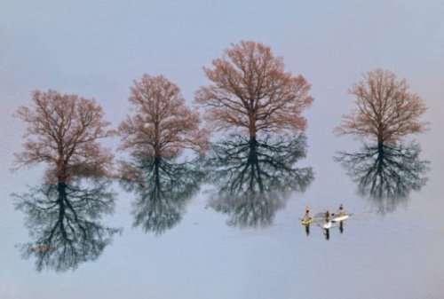 Мир прекрасен и без фотошопа (38 фото)