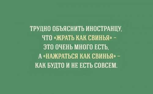Прикольные картинки об особенностях русского языка (15 шт)