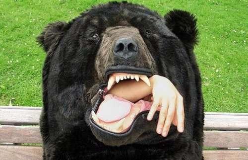 Спальный мешок в виде медведя не позволит другим потревожить ваш сон (5 фото)