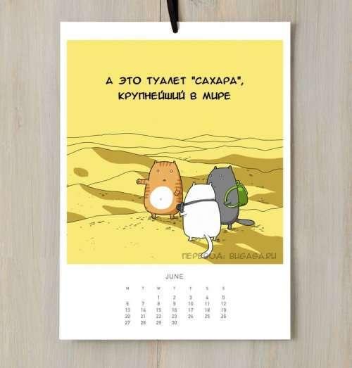 Кошачий календарь на 2016-ый год (12 фото)