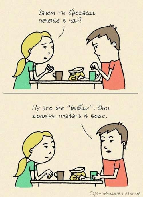 """Комиксы о семейной жизни """"Пара – нормальные явления"""" (22 шт)"""