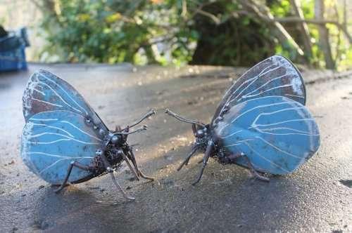 Реалистичные скульптуры животных из металла, созданные Джоном Брауном (13 фото)
