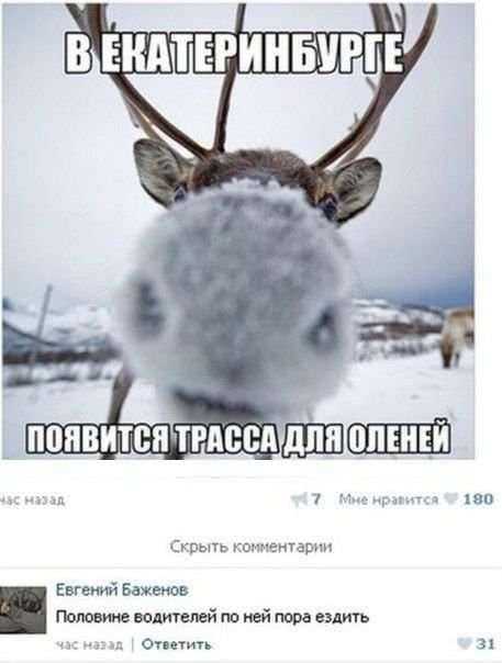 Прикольные комментарии из социальных сетей (31 фото)
