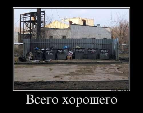 Новые демотиваторы (11 фото)