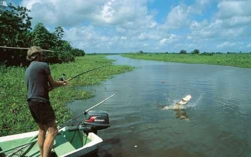 Факты про рыбалку, которые вы могли не знать (9 фото)