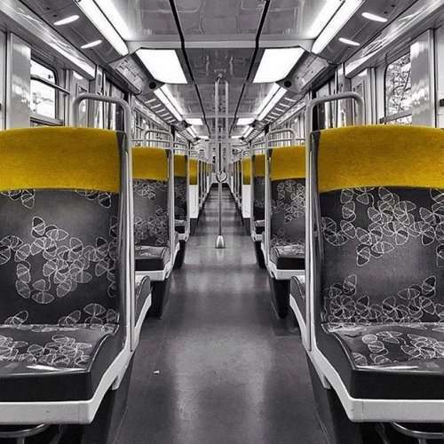 Симметричные монстры (20 фото)