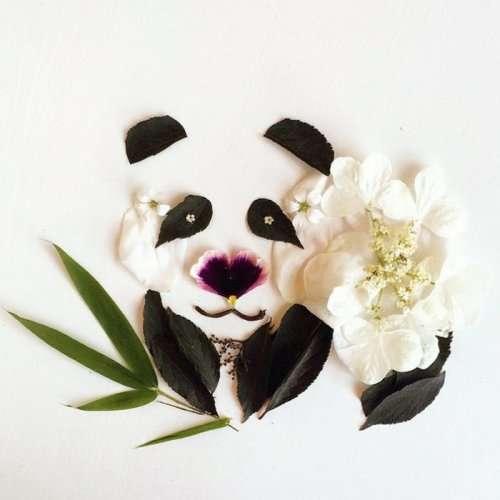 Удивительные картины Бриджит Бет Коллинз, созданные самой природой (20 фото)