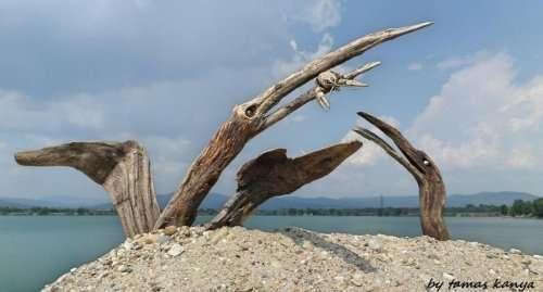 Деревянные скульптуры, созданные из того, что прибило к берегу (16 фото)
