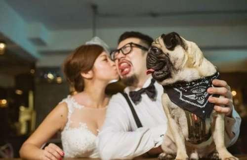 Весёлые и забавные свадебные фотографии (18 фото)
