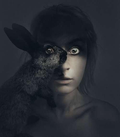 Фотограф, перевоплощающийся в животных (6 фото)