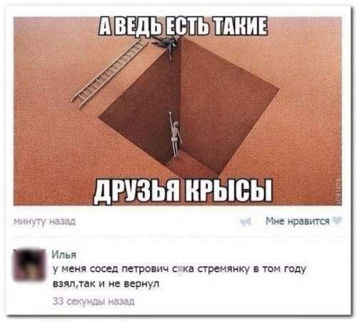 Прикольные комментарии из соцсетей (30 фото)