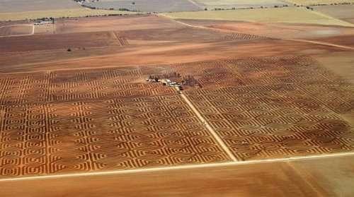 Австралийский фермер борется c эрозией почвы с помощью лэнд-арта (2 фото)