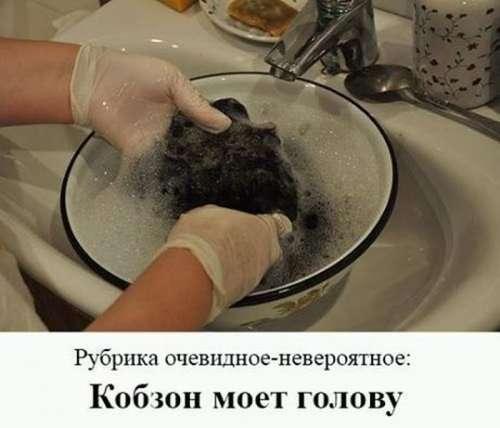 Свежая подборка фото приколов (36 шт)