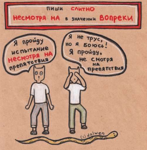 Грамотные котики в иллюстрациях Анны Беловицкой (15 фото)